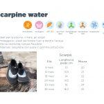 SCARPINE